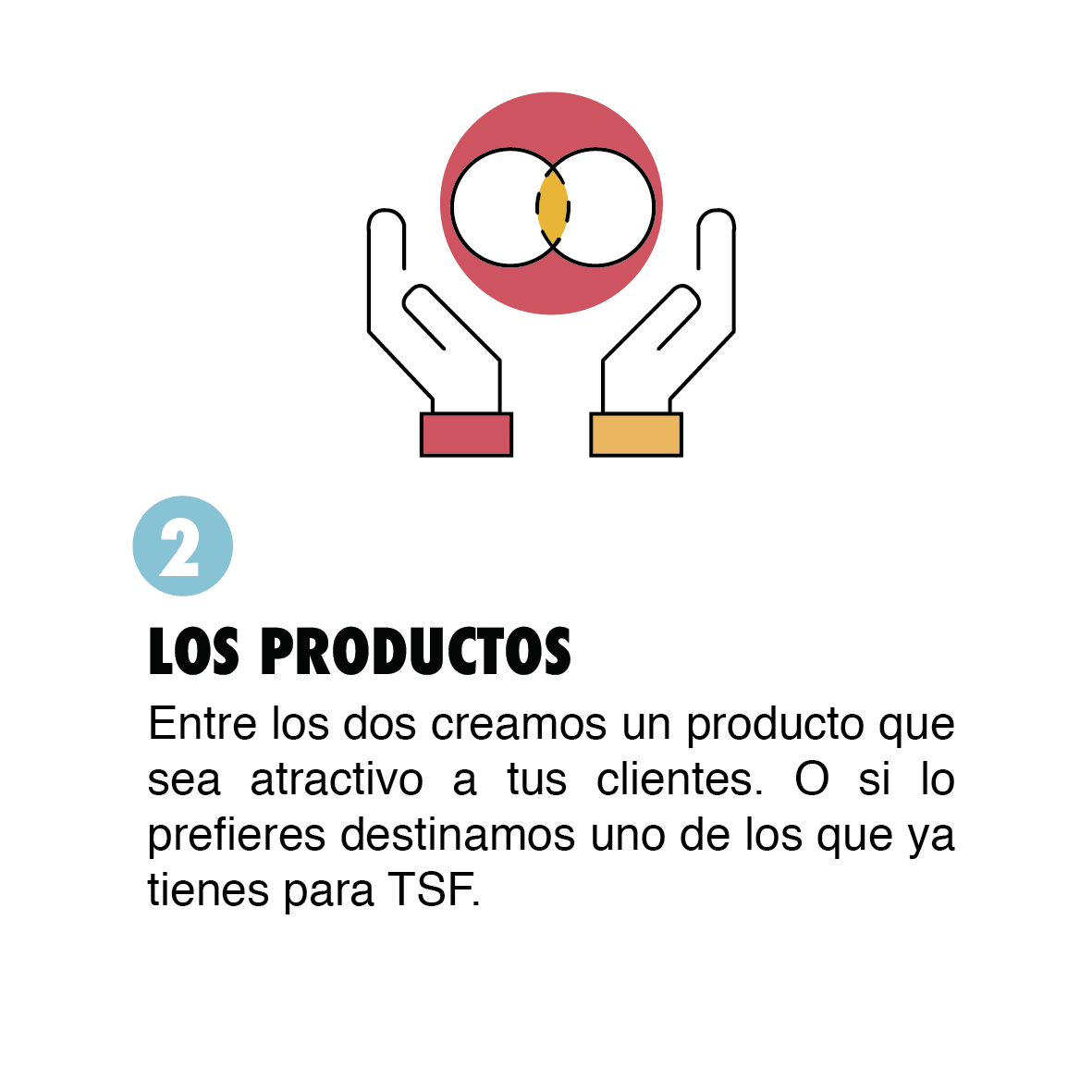TSF PRODUCTOS-06